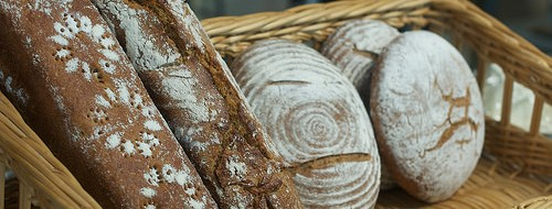 Pick Up Hot, Fresh Breads and Pastries by the Dozen at Great Harvest Bread Company