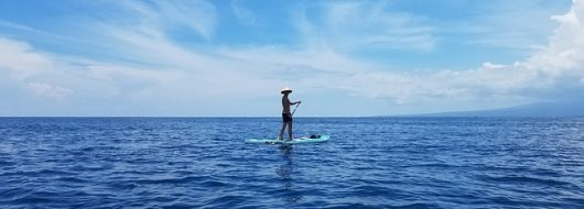 Don't Miss the Last Two Stand Up Paddle Board Yoga Classes From Mind Your Body Oasis