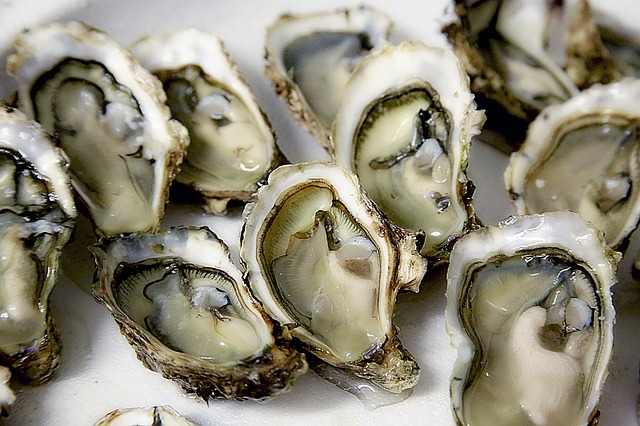 Enjoy Oysters and More in a Charming Setting at Dyllan's Raw Bar and Grill